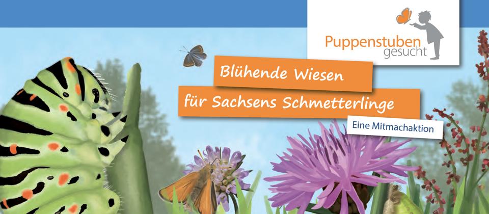 Schsische Landesstiftung Natur Und Umwelt